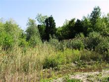 Lot for sale in Hemmingford - Canton, Montérégie, Chemin  Marlin, 11858043 - Centris