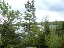 Terrain à vendre à Alma, Saguenay/Lac-Saint-Jean, Chemin de la Baie-des-Jean, 12250464 - Centris