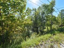 Lot for sale in Saint-François-Xavier-de-Brompton, Estrie, Chemin de la Rivière, 26225486 - Centris