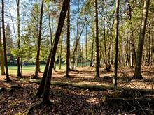 Lot for sale in Brompton (Sherbrooke), Estrie, Rue de l'Albatros, 28937957 - Centris