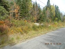 Lot for sale in Sainte-Agathe-des-Monts, Laurentides, Chemin du P'tit-Bonheur, 12584353 - Centris