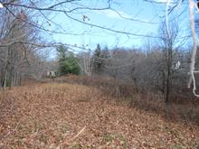 Lot for sale in Sutton, Montérégie, 129, Chemin  Schweizer, 27501939 - Centris