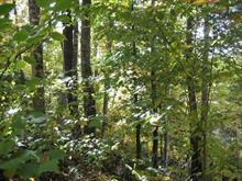 Terrain à vendre à Mont-Tremblant, Laurentides, Chemin  Wheeler, 25682111 - Centris