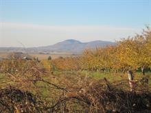 Terre à vendre à Rougemont, Montérégie, Chemin des Sept, 12133672 - Centris
