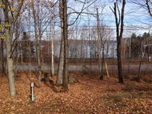 Lot for sale in Lac-aux-Sables, Mauricie, 220, Rue  Bourassa, 11710917 - Centris