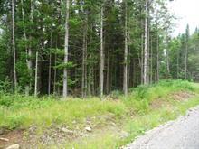 Lot for sale in Saint-Herménégilde, Estrie, Chemin  Armand-Martineau, 21807422 - Centris