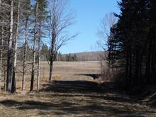 Lot for sale in Saint-Herménégilde, Estrie, Chemin  Jean-Paul-Dupont, 17214123 - Centris