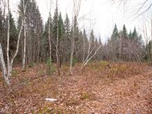Land for sale in Saint-Lambert-de-Lauzon, Chaudière-Appalaches, Chemin  Iberville, 23472435 - Centris