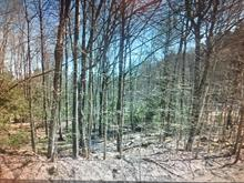 Lot for sale in La Pêche, Outaouais, 38, Chemin des Roches, 23704223 - Centris