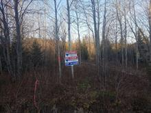 Lot for sale in Val-David, Laurentides, Rue  Champêtre, 10251435 - Centris