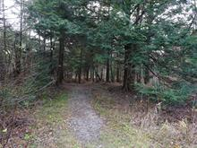 Lot for sale in Sutton, Montérégie, Chemin  Morgan, 10378796 - Centris