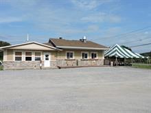 Bâtisse commerciale à vendre à Notre-Dame-de-la-Salette, Outaouais, 1418, Route  309, 24560256 - Centris