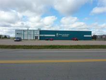 Bâtisse commerciale à vendre à Dolbeau-Mistassini, Saguenay/Lac-Saint-Jean, 341, boulevard  Vézina, 11655880 - Centris