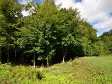Lot for sale in Mont-Tremblant, Laurentides, Chemin des Magnolias, 25642895 - Centris
