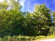 Terrain à vendre à Val-des-Monts, Outaouais, 11, Chemin  Champlain, 12077823 - Centris
