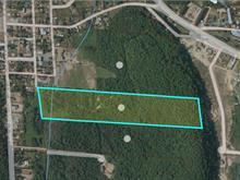 Terrain à vendre à Chénéville, Outaouais, Rue de l'Hôtel-de-Ville, 28585649 - Centris