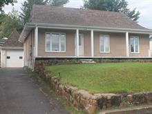House for sale in Larouche, Saguenay/Lac-Saint-Jean, 687, Rue  Richer, 17557603 - Centris