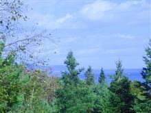 Terrain à vendre à Saint-Irénée, Capitale-Nationale, Chemin de l'Anse-au-Sac, 25464118 - Centris