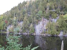 Lot for sale in Saint-Adolphe-d'Howard, Laurentides, Chemin des Berges, 24841012 - Centris