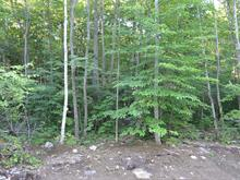 Lot for sale in Saint-Calixte, Lanaudière, Rue  Non Disponible-Unavailable, 24665528 - Centris