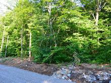 Lot for sale in Saint-Calixte, Lanaudière, Rue de la Batteuse, 20068285 - Centris