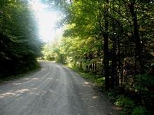 Terrain à vendre à Saint-Faustin/Lac-Carré, Laurentides, Chemin du Lac-Nantel Sud, 22204554 - Centris