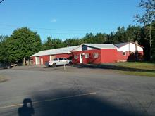 Industrial building for sale in Plessisville - Paroisse, Centre-du-Québec, 479, 7e Rang, 19698182 - Centris