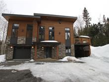 Maison à vendre à Saint-Donat, Lanaudière, 19, Chemin du Détour, 23984301 - Centris