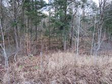 Lot for sale in Stoneham-et-Tewkesbury, Capitale-Nationale, 1565, Route  Tewkesbury, 11910711 - Centris