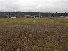 Lot for sale in Saint-Adelphe, Mauricie, Rue  Principale, 28427998 - Centris