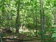 Lot for sale in Wentworth-Nord, Laurentides, Rue  Grilli, 28512960 - Centris
