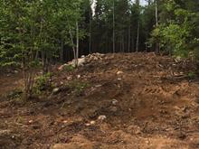 Lot for sale in Laterrière (Saguenay), Saguenay/Lac-Saint-Jean, Chemin du Lac-des-Maltais, 21281758 - Centris