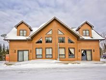Maison à vendre à Barraute, Abitibi-Témiscamingue, 38B, Chemin du Mont-Vidéo, 13348552 - Centris