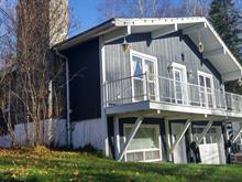 Maison à vendre à Saint-Donat, Lanaudière, 108, Chemin du Lac-Blanc, 20118541 - Centris
