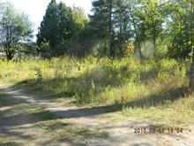 Lot for sale in Val-David, Laurentides, Rue  Monty, 16494078 - Centris