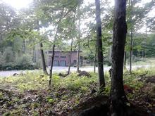 Terrain à vendre à Saint-Sauveur, Laurentides, Chemin des Cascades, 14277737 - Centris
