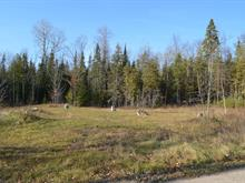 Land for sale in L'Isle-aux-Allumettes, Outaouais, Chemin  Beech, 16999783 - Centris