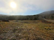 Lot for sale in Saint-Gabriel-de-Rimouski, Bas-Saint-Laurent, Route  298 Sud, 26367554 - Centris