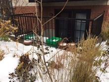 Condo / Appartement à louer à Rosemont/La Petite-Patrie (Montréal), Montréal (Île), 6195, Rue  D'Iberville, 12082454 - Centris