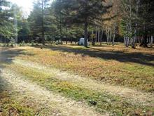 Lot for sale in Bowman, Outaouais, Chemin  O'Dwyer, 21860377 - Centris