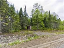Lot for sale in Rivière-Héva, Abitibi-Témiscamingue, 227, Rue  Cloutier, 26583758 - Centris