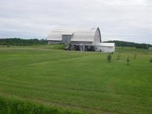 Terre à vendre à Roquemaure, Abitibi-Témiscamingue, 630, 4e-et-5e Rang Ouest, 24833788 - Centris