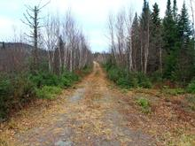 Lot for sale in Saint-Fabien-de-Panet, Chaudière-Appalaches, Rang  Sainte-Marie, 28891442 - Centris