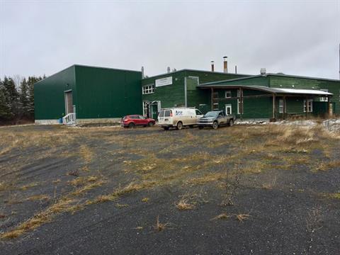 Bâtisse industrielle à vendre à Amqui, Bas-Saint-Laurent, 310, Rue des Forges, 27310033 - Centris