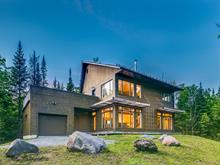 House for sale in Eastman, Estrie, 51, Rue des Wapitis, 24631851 - Centris