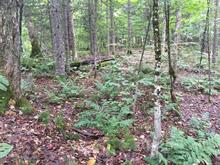 Terrain à vendre à Lac-Supérieur, Laurentides, Chemin des Pentes-Nord, 20382215 - Centris