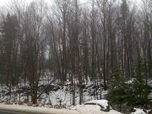 Lot for sale in Saint-Adolphe-d'Howard, Laurentides, Chemin  Gémont, 14370107 - Centris