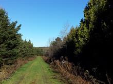 Terre à vendre à Saint-Ferdinand, Centre-du-Québec, 213, 2e Rang, 26511724 - Centris