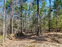 Lot for sale in Pontiac, Outaouais, 2, Chemin  Mélémi, 9599396 - Centris