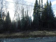 Lot for sale in Preissac, Abitibi-Témiscamingue, 91, Chemin des Pins, 14176845 - Centris